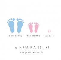 new family landscape